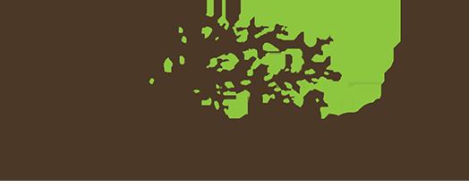 Darrin Phegley – Capturing Life! logo